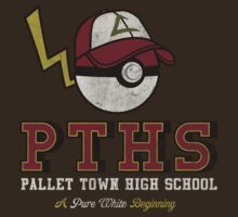 Pallet Town High School by Arinesart