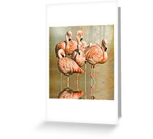 Cleaning up their act. Greeting Card