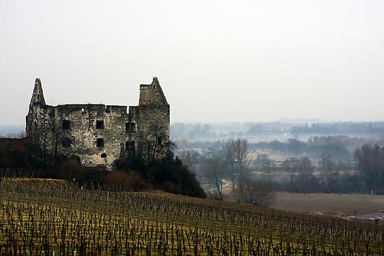 Schwendi-Schloss by Jörg Holtermann