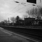 Dark railway by Diana F. Sá