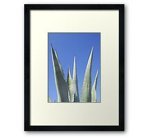Straight To The Point Framed Print