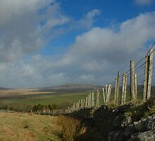 Across the moor by denisegladwell