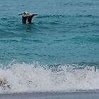 Port Saint Lucie pelican by Roslyn Lunetta