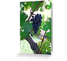 Cedar Creek Vines Greeting Card