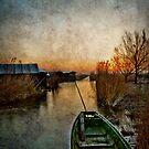 Morning at the lake by Kurt  Tutschek