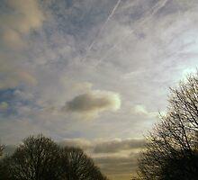 Hampstead Heath Mid Winter Sky by Artway