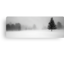 Bridgton Highlands - Trees In Fog and Snow Canvas Print
