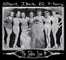 Short, Dark, & Hairy, The Ladies Love Itt! by torg