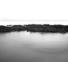 Reef by Tom Black