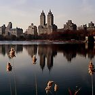 Central Park West by micpowell