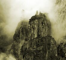 Sepia Colossus by berndt2