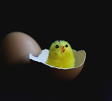 Happy Easter by Beata  Czyzowska Young