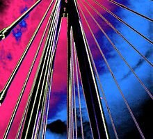 Cables by Karen Martin