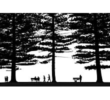 Stories under the trees Photographic Print