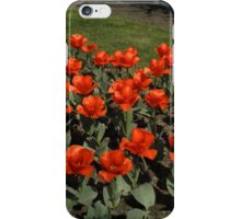 Cleveland Greenhouse 46 iPhone Case/Skin