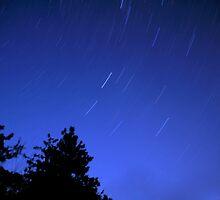 Star Trails by Karin  Hildebrand Lau
