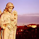 Coogee Angel by bouche