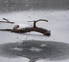 the frozen lake 1 by wespenspinne