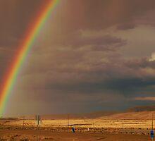 Elko Rainbow by Karin  Hildebrand Lau
