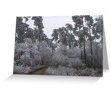 giants in the forest Greeting Card