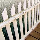 Private Dock Fence by confections