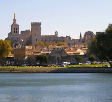 Palais des Papes  Avignon  France by jay12