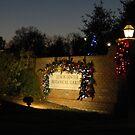 Lewis Ginter Botanical Garden - Richmond by ctheworld