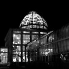 Lewis Ginter Botanical Garden- Richmond (B&W) by ctheworld