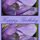 Happy Birthday Purple II by TLCGraphics