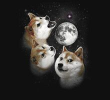 Three Doge Moon by scolecite