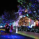 Xmas lights by PhotosByG