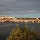 Prague by conradhoe