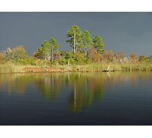 The Five Pines before the Storm Photographic Print