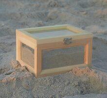 Sandbox by Ilene Clayton
