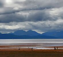 Cricket Applecross Beach by Kenart