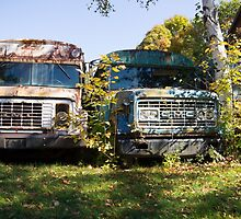 the old buses by Anne Scantlebury