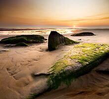 Face In The Sand by Twisted
