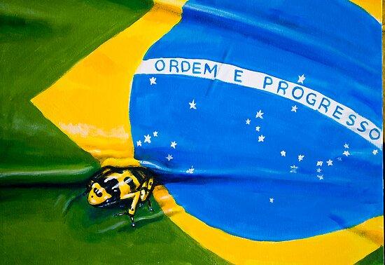 Amazon poison dart frog by robinmoore