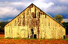 Big Yellow Barn by Grinch/R. Pross