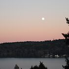 FULL MOON ON LAKE WASHINGTON by Jymmi Sparkz