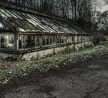The Greenhouse by Richard Shepherd