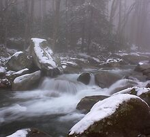 Perfect Conditions GSMNP by ThomasRBiggs