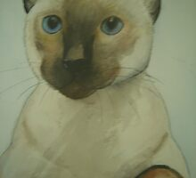kirby the cat by margaretfraser
