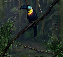 Channel Billed Toucan by Walter Colvin