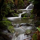 Silver Falls Creek by CezB