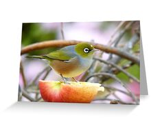 Yum... This Is An Extra Juicy Apple... - Silver-Eye - NZ Greeting Card