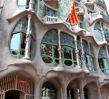 Casa Battlló by Tom Gomez