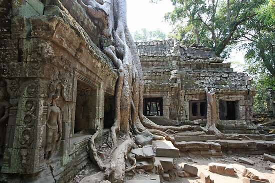 Ta Prohm, Cambodia by Leigh Penfold