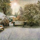 Magical Snowy Garden by Ian Mitchell
