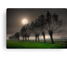 Fairy tales willows #1 Canvas Print